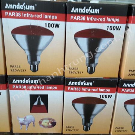 Bóng-đèn-Anndesum